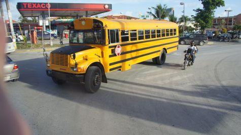 В Доминикане есть специальные школьные автобусы