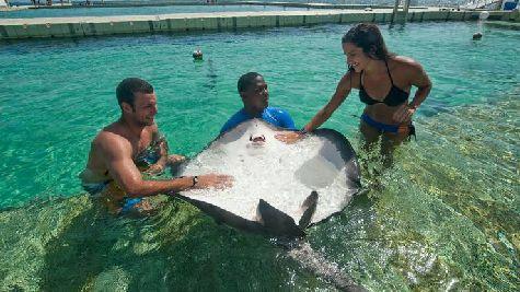 Круиз для снорклинга в Маринариуме поможет вам открыть чудеса рифов и удивительного подводного мира