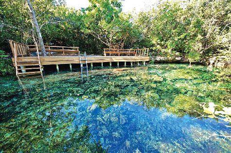 Экологический парк  - кусочек чудом сохранившейся в Доминиканской республике первозданной природы (флоры и фауны)